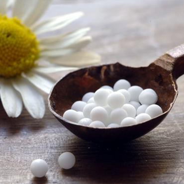 Montreal_Naturopath_Homeopath_Fertility